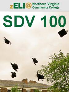 SDV100_update