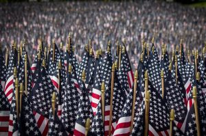 Photograph of several American flags.